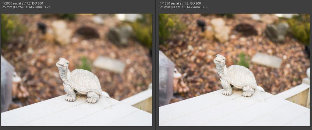 Olympus 25mm F/1.2 vs 25mm F/1.8