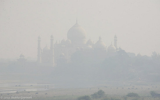 shobha gopinath Taj Mahal through the smog, Agra, India